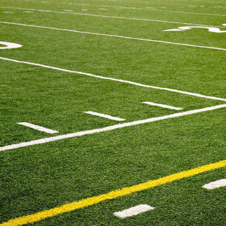 Artificial / Synthetic Turf Care