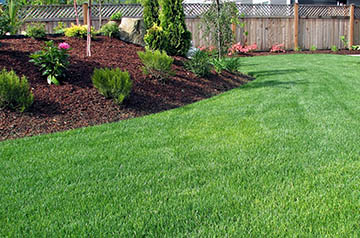 natural grass and mulch